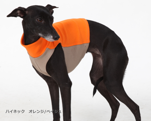 """画像2: """"DG Styleキャンペーン""""DG 【 cotton 】ハイネック ベイジュ"""